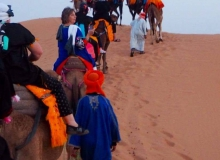 going thru the sahara with camel